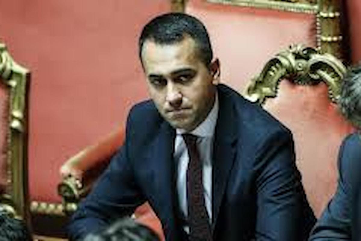 M5s, il documento dei senatori Di Nicola, Dessì, Crucioli: abolire capo politico e...