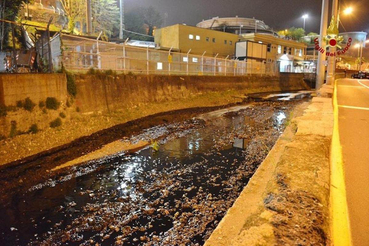 Il Polcevera a Genova invaso dal petrolio. Rischio disastro ambientale