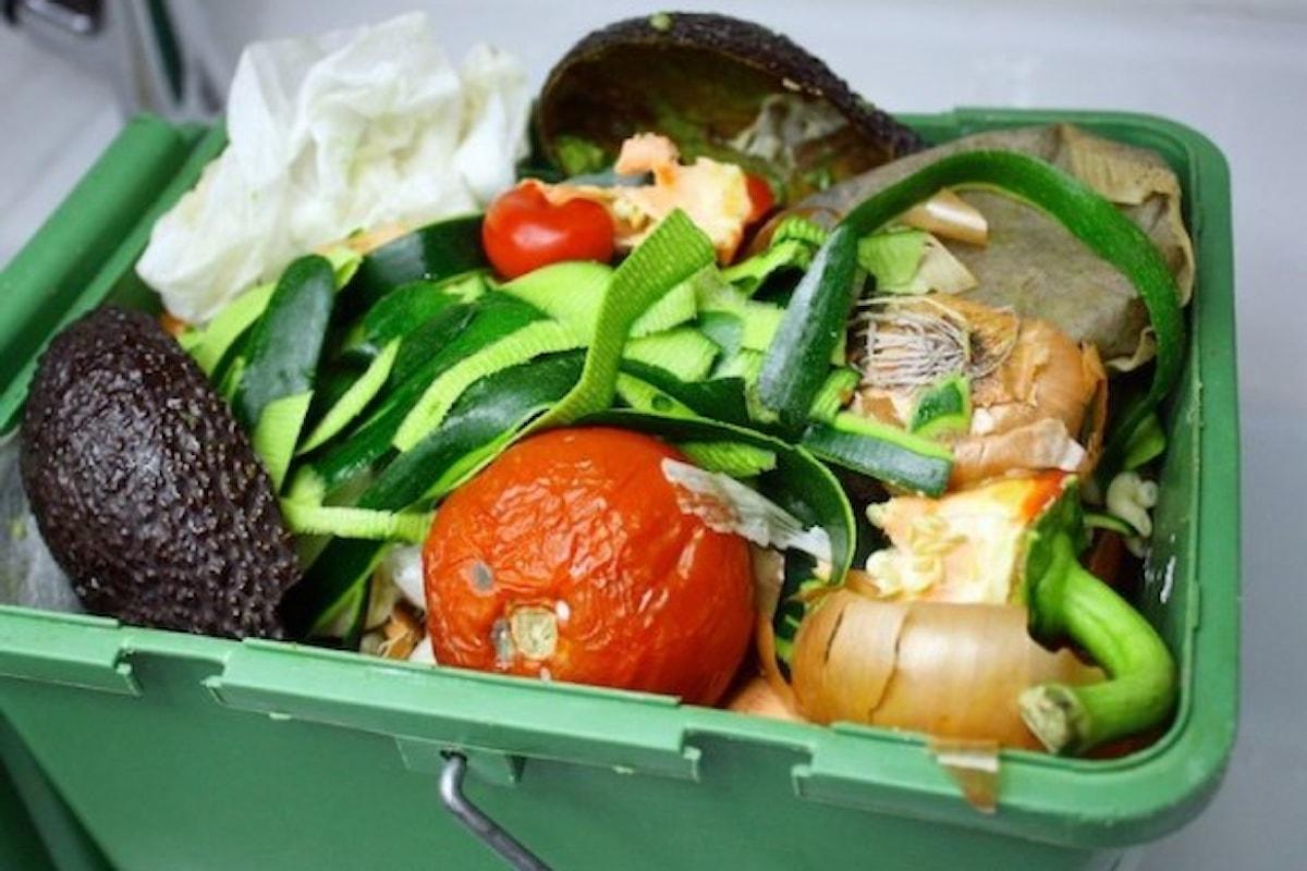Sprechi alimentari ridotti dal 60% degli italiani