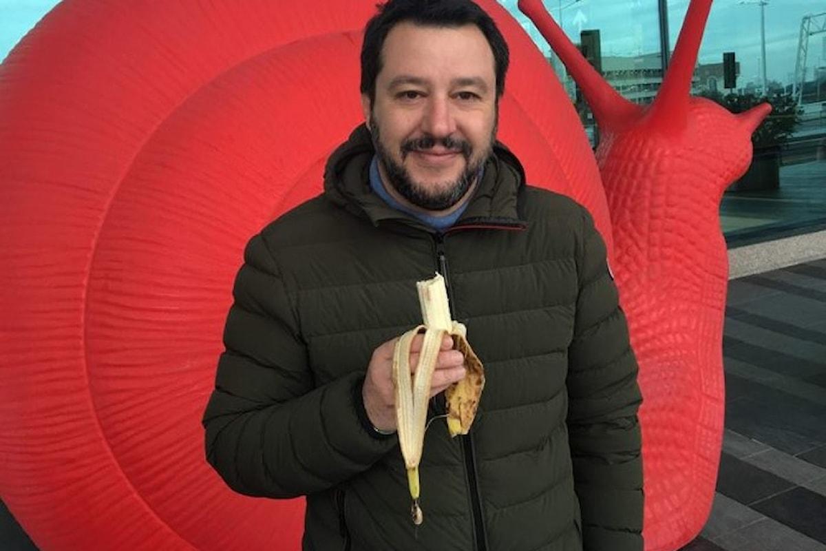 Salvini premier, Berlusconi ministro
