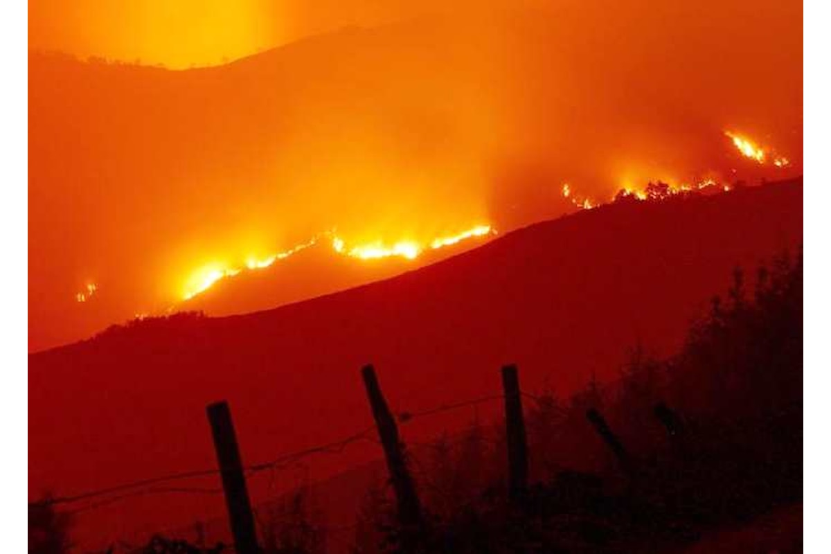 Ofelia, crea pochi danni in Irlanda e Gran Bretagna, ma distrugge con il fuoco Portogallo e nord della Spagna, causando decine di vittime